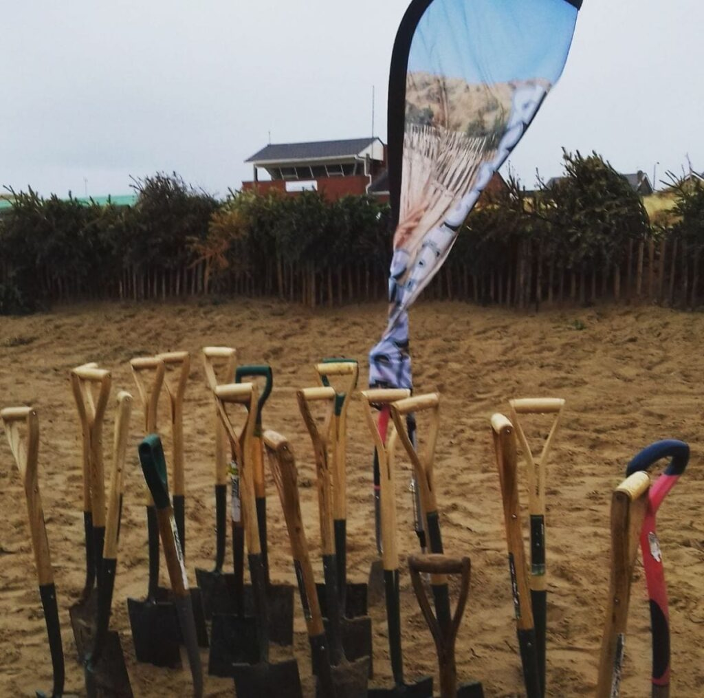 Planting Christmas trees at St Annes sand dunes