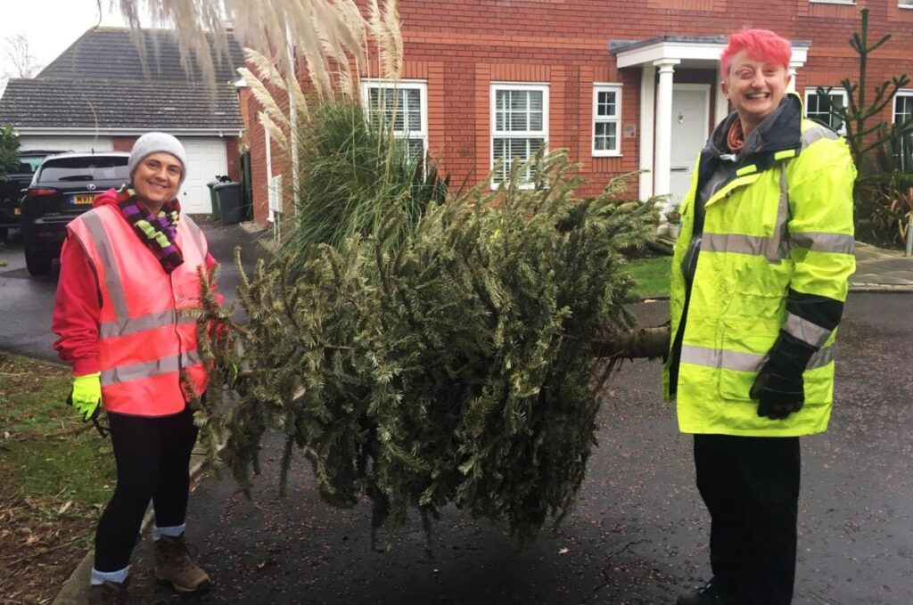 Christmas tree collection for Trinity Hospice