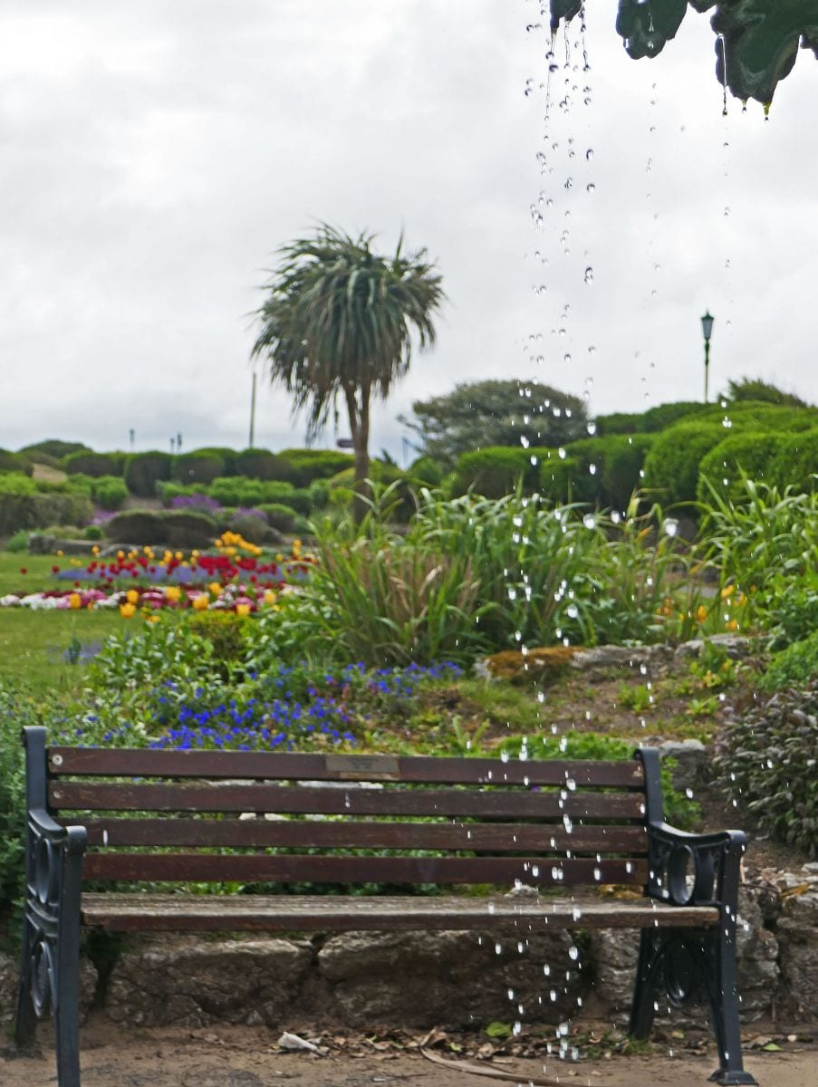 St Annes seafront gardens, photo by Sue Massey
